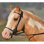 Icelandic BRIDLE with reins Beta Biothane