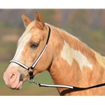 whiteoverlay GROOMING HALTER & LEAD made from BETA BIOTHANE (Any 2 COLOR COMBO)
