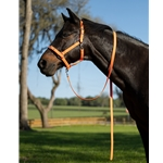 Buckle Nose Halter & Lead Beta Biothane Solid Colored