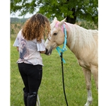 turquoise Buckle Nose Safety HALTER & LEAD made from BETA BIOTHANE (Solid Colored)