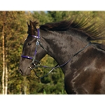 purplebase ENGLISH CONVERT-A-BRIDLE made from BETA BIOTHANE (ANY 2 COLOR COMBO)