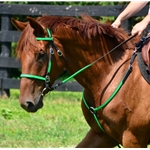 light green (lime/mint)overlay  ENGLISH CONVERT-A-BRIDLE made from BETA BIOTHANE (ANY 2 COLOR COMBO)