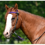 purple(med-dark) Snap on Browband WESTERN BRIDLE made from BETA BIOTHANE (ANY 2 COLOR COMBO)