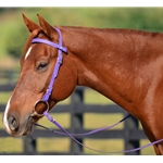 purple Snap on Browband WESTERN BRIDLE made from BETA BIOTHANE (Solid Colored)