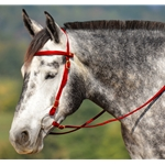 red Snap on Browband WESTERN BRIDLE made from BETA BIOTHANE (Solid Colored)