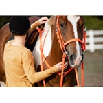 red Traditional HALTER BRIDLE with BIT HANGERS made from BETA BIOTHANE (Solid Colored)