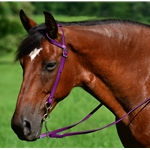 purple WESTERN BRIDLE (One Ear or Two Ear Split Ear Browband) made from BETA BIOTHANE (Solid Colored)
