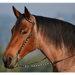 black WESTERN BRIDLE (One or Two Ear Split Browband) made from BETA BIOTHANE (With BLING)