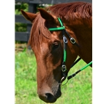limegreenbase WESTERN BRIDLE (Full Browband) made from BETA BIOTHANE (ANY 2 COLOR COMBO)