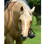 brown WESTERN BRIDLE (One or Two Ear Split Ear Browband) made from BETA BIOTHANE (with SILVER SPOTS or STUDS)