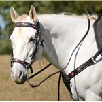 ENGLISH BRIDLE with CAVESSON made from LEATHER with Beta Biothane Diamond Cutouts