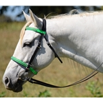 ENGLISH CONVERT-A-BRIDLE made from BETA BIOTHANE (ANY 2 COLOR COMBO