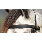 black SNAP ON BROWBAND made from BETA BIOTHANE
