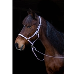 purple Quick Change HALTER BRIDLE with Snap on Browband made from BETA BIOTHANE (Solid Colored)