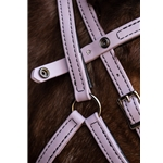 turquoise Quick Change HALTER BRIDLE with Snap on Browband made from BETA BIOTHANE (Solid Colored)