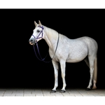 yellow Quick Change HALTER BRIDLE with Snap on Browband made from BETA BIOTHANE (Solid Colored)