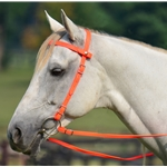 orange Quick Change HALTER BRIDLE with Snap on Browband made from BETA BIOTHANE (Solid Colored)