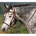 brown Quick Change HALTER BRIDLE with Snap on Browband made from BETA BIOTHANE (Solid Colored)