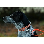 Center Ring Safety DOG COLLAR made from BETA BIOTHANE with REFLECTIVE DAY-GLO