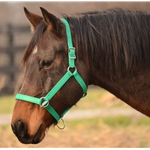 PACK HALTER made from BETA BIOTHANE (Solid Colored)