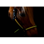 **Glow In the Dark** Turnout Halter made from BETA BIOTHANE (Solid Colored)