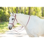 SHOW BRIDLE with Silver Studs made from Beta Biothane