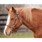 ****BETTER THAN  LEATHER ****Quick Change Halter Bridle made from BETA BIOTHANE