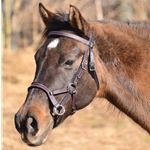 Colored Thread SIDEPULL Bitless Bridle made from BETA BIOTHANE