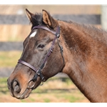 Colored Thread ENGLISH CONVERT-A-BRIDLE made from BETA BIOTHANE