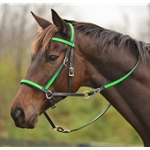 lightgreen (lime/mint)overlay 2 in 1 BITLESS BRIDLE made from BETA BIOTHANE (Any 2 COLOR COMBO)