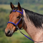 blue base 2 in 1 BITLESS BRIDLE made from BETA BIOTHANE (Any 2 COLOR COMBO)