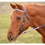 **DEAL OF THE DAY** WESTERN BRIDLE (Full Browband) made with REFLECTIVE DAY GLO Biothane