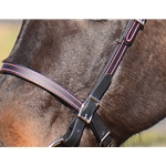 **FLASH SALE** Colored Thread BRIDLE made from BETA BIOTHANE