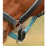 **FLASH SALE** Turquoise Padded BRIDLE made from BETA BIOTHANE with TURQUOISE LEATHER PADDING