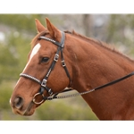 **FLASH SALE** SILVER SPOTTED/STUDDED Bridles made from BETA BIOTHANE