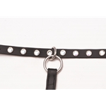 blackbase SLIDING RUNNING MARTINGALE ATTACHMENT made from BETA BIOTHANE (WITH BLING)