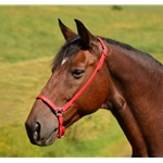 Drop Noseband English Cavesson made from Beta Biothane