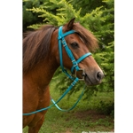 PICNIC BRIDLE or SIMPLE HALTER BRIDLE made from Beta Biothane