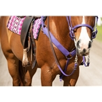 2 inch Wide Western Breast Collars made from Beta Biothane