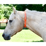 NECK COLLAR for Horses Made from Beta Biothane