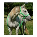 HALTER & LEAD made from BETA BIOTHANE (Solid Colored)