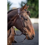 WESTERN BRIDLE with Futurity Knot Browband made from BETA BIOTHANE (Solid Colored)