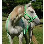 limegreen Turnout HALTER & LEAD made from BETA BIOTHANE (Solid Colored)