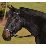 ENGLISH HUNT BRIDLE Made from Beta Biothane