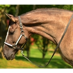 whiteoverlay  Turnout HALTER & LEAD made from BETA BIOTHANE (Any 2 COLOR COMBO)