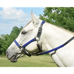 bluebase Turnout HALTER & LEAD made from BETA BIOTHANE (Any 2 COLOR COMBO)