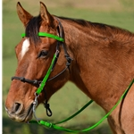 **Green Bean Official Tack*** Snap on Browband WESTERN BRIDLE made from BETA BIOTHANE