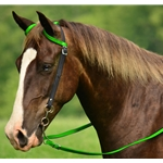 WESTERN BRIDLE (One Ear or Two Ear Split Ear Browband) made from BETA BIOTHANE (Mix N Match) **Green Bean Official Tack***