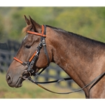 orange overlay (bright/hunters/blaze)  Traditional HALTER BRIDLE with BIT HANGERS made from BETA BIOTHANE (ANY 2 COLOR COMBO)