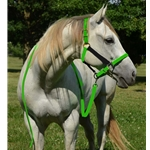 HALTER & LEAD made from BETA BIOTHANE (Mix N Match) **Green Bean Official Tack***
